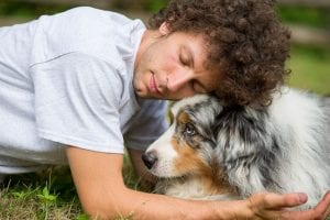 3 Ideas for Loving Pet Loss Services